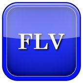 FLV icon — Stock Photo