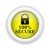 100 percent secure icon — Stock Photo
