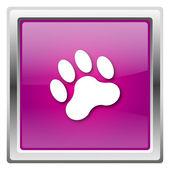Paw print icon — Stock Photo