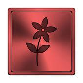 Icône de fleur — Photo