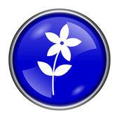 Květina ikona — Stock fotografie
