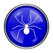 Pavouk ikona — Stock fotografie