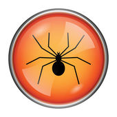 Spider icon — Stock Photo