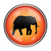 Elephant icon — Stock Photo