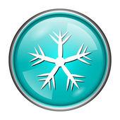 Snowflake icon — Stockfoto
