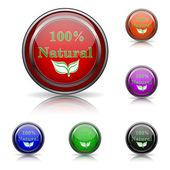 100 percent natural icon — Stock Vector