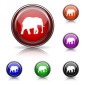 Elephant icon — Stock Vector