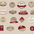 Set of vintage badges — Stock Vector #16626549