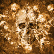 Grunge wall with skull — Stock Photo