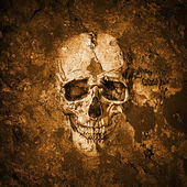 Grunge wall with skull — Foto de Stock