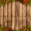 Stock Photo: Wooden board with autum coloured leaves
