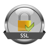 Vector Button SSL — Stock Vector
