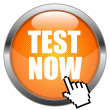 Stock Vector: Vector Button Test Now