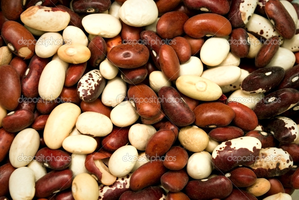 Brown and white beans bacground  Stock Photo #15004551