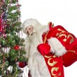 Santa Claus — Stock Photo #14694083