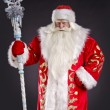 SantClaus — Stock Photo #14694231
