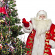 Santa Claus — Stock Photo #14694249