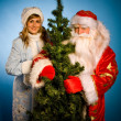 RussiChristmas — Stock Photo #14694575