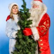 russian christmas — Stock Photo