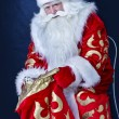SantClaus — Stock Photo #14694609
