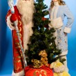 SantClaus — Stock Photo #17148805