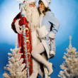 SantClaus — Stock Photo #17148813
