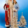 SantClaus — Stock Photo #17148821
