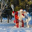 Ded Moroz (Father Frost) — Stock Photo #17154173
