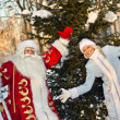 Ded Moroz (Father Frost) — Stock Photo #17154205