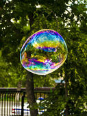 Soap bubbles — Stock Photo