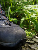 Hiking boot — Stock Photo
