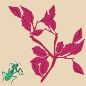 Mantis i roślin — Wektor stockowy