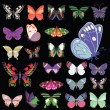 Set of butterflies - Stockvectorbeeld