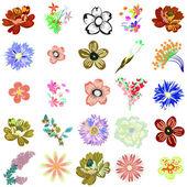 Set of creative flowers — Stock Vector
