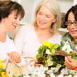 Stock Video: Retired Ladies Fun Flower Arranging