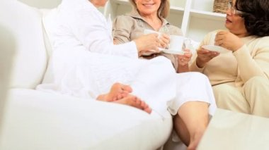 Older Ladies Drinking Coffee Friends Home Couch — 图库视频影像 #17603889
