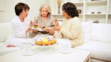 Retired Girlfriends Enjoying Tea Cakes and Gossip — Stock Video