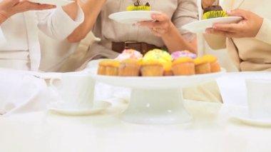 Multi Ethnic Female Seniors Social Morning — Stock Video #17604487