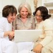 Older Girlfriends Wireless Laptop Online Entertainment - Stock Photo