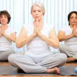 Health Club Yoga Group Senior Ladies - Stockfoto