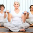 Older Female Health Club Yoga Class - Stock Photo