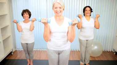 Multi ethnic group retired females using weights exercise health club