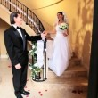 Stock Video: Proud Bridegroom with Bride Wedding Day