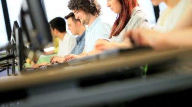 女导师帮助大学学生学位研究 — 图库视频影像 #18080809