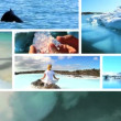 Montage of Changing Environmental Ecosystems - Foto Stock