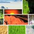 Montage of earths natural climate in Global  environments — Video
