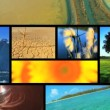 Stock Video: Montage of ecosystems around the Globe