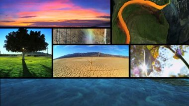 Montage view of Earths ever changing environmental ecosystems around the Globe