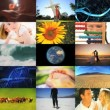 Montage of human and environmental ecosystems - Stock Photo