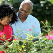 Senior loving ethnic couple outdoors keeping healthy flowering - Stock Photo